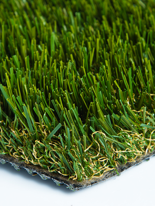 Diamond Pro Fescue Turf